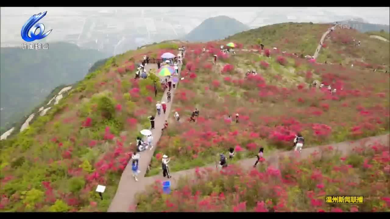 瑞安马屿文化旅游节开幕